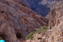 chania_seitan_limania12